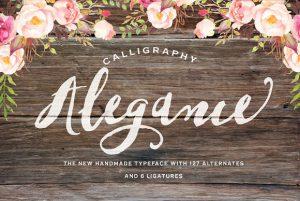 Alegance Font